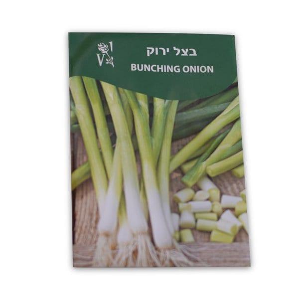 זרעי בצל ירוק