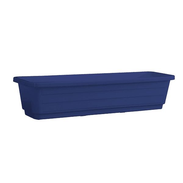 אדנית עצמון כחול