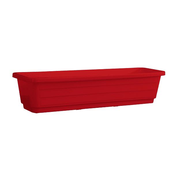 אדנית עצמון אדום