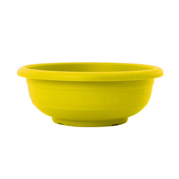 קערה כנרת צהוב