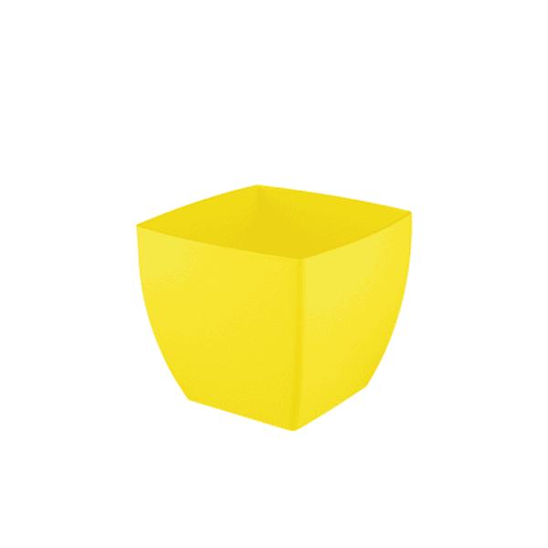 עציץ אגת צהוב