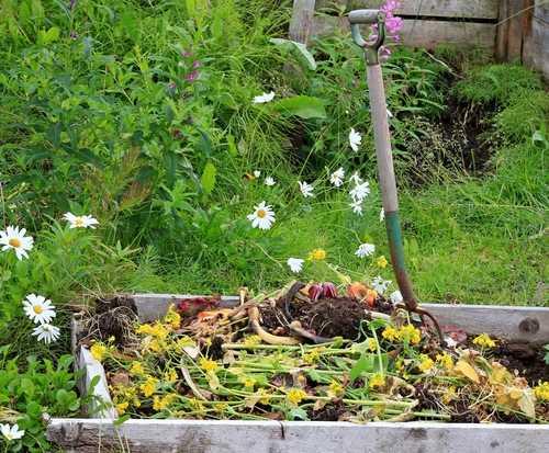 קומפוסט יעיל לגינה