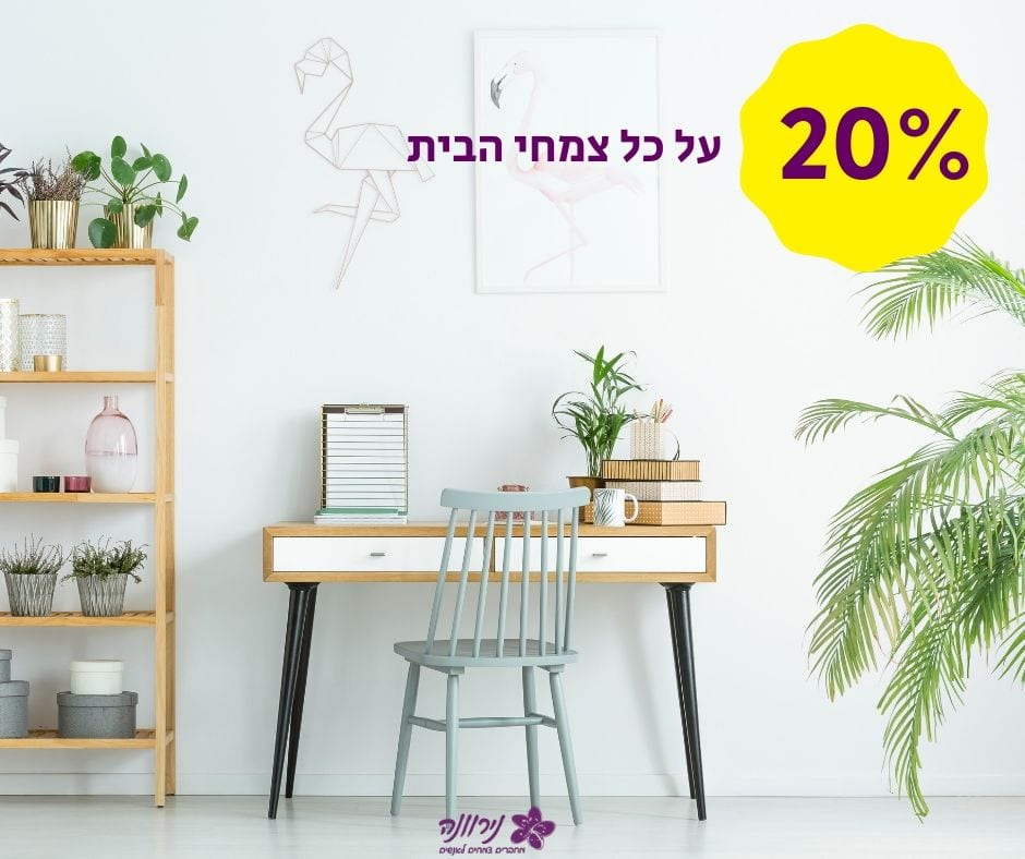 20% (2)