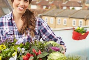 מזיקים בגינה וטיפול באופן טבעי