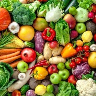 שתילי ירקות